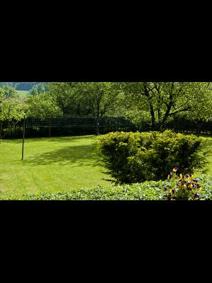 Soukromá zahrada